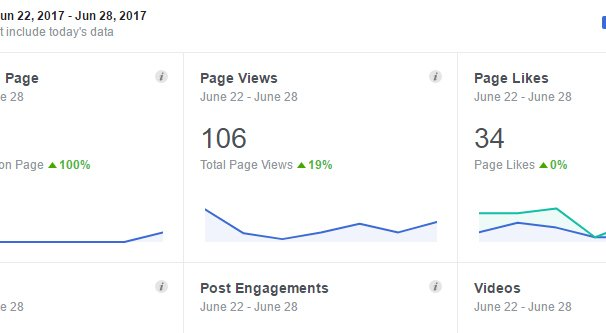 Page Views Stat